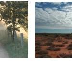 landscape panel 2
